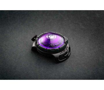 Orbiloc Dog Dual Light Purple