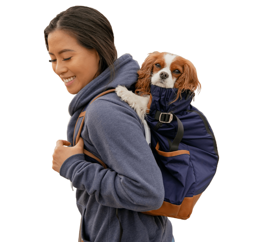 Dog Backpack Urban Navy 2