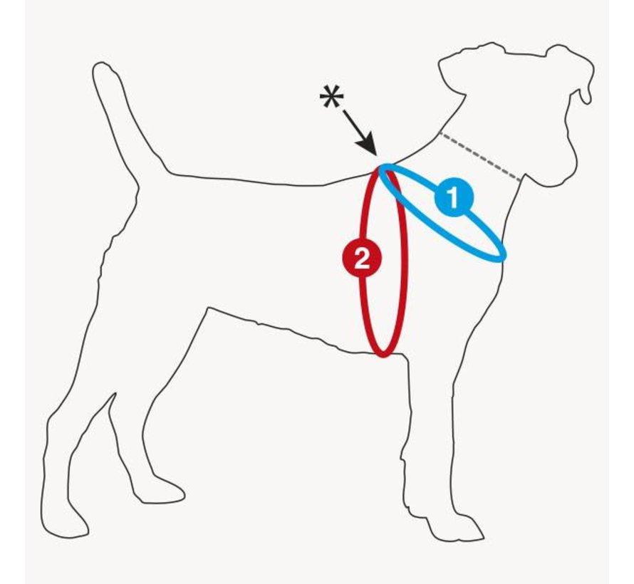 Dog Harness Air Mesh Grey