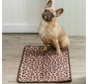 Barrier Rug Leapard