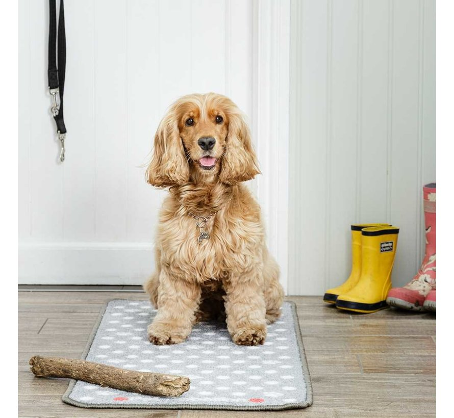 Barrier Rug Stop Muddy Paws Dotty Grey