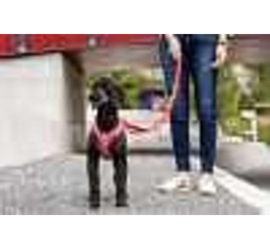 Dog harness Merino red