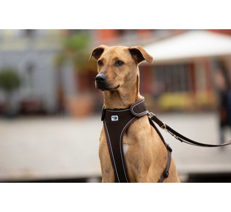 Verstelbare Hondenriem Bruin