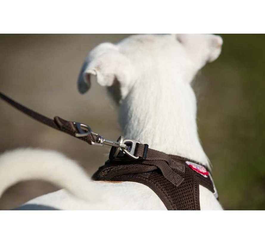 Adjustable Dog Leash Brown