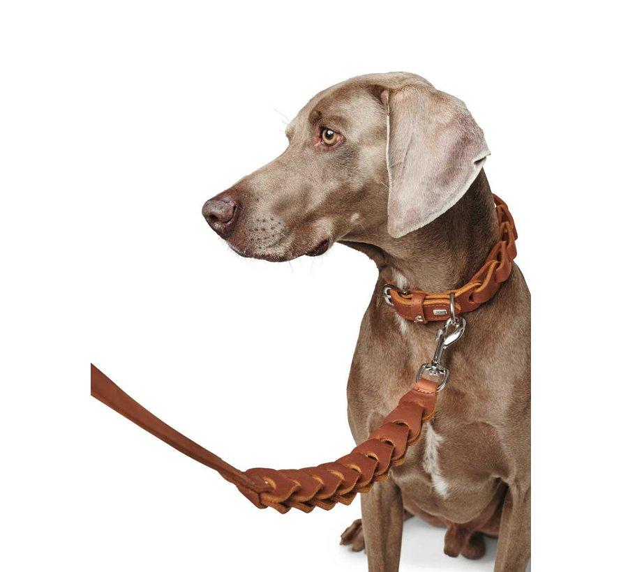 Hondenriem Solid Education Chain Cognac