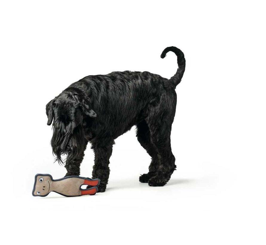 Dog Toy Pombas