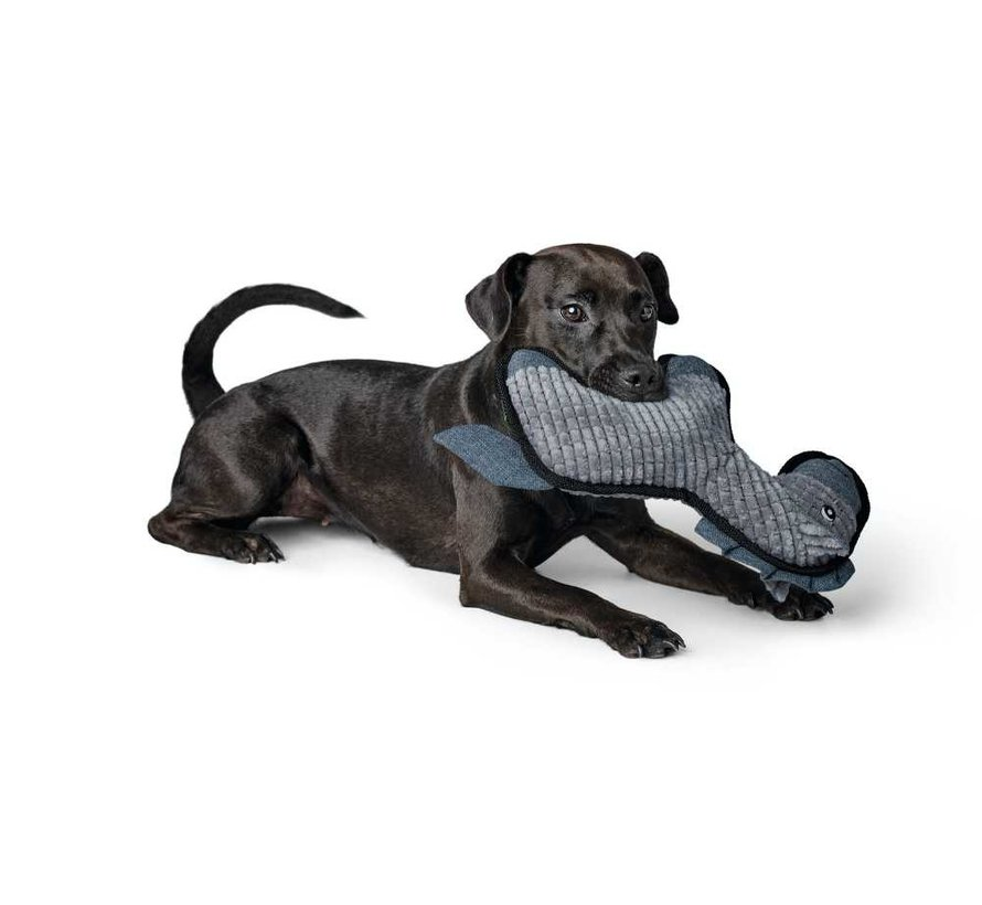 Hondenspeelgoed Kolding