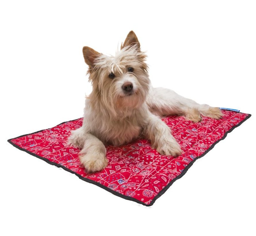 Cooling Mat Red Western Pacific