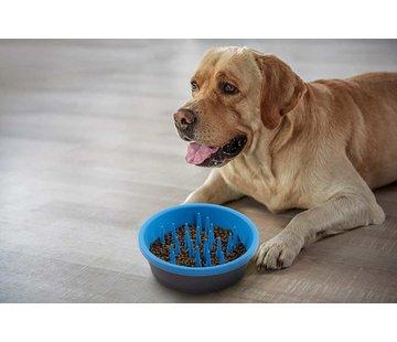 Dexas Food Bowl Slow Feeder Blue