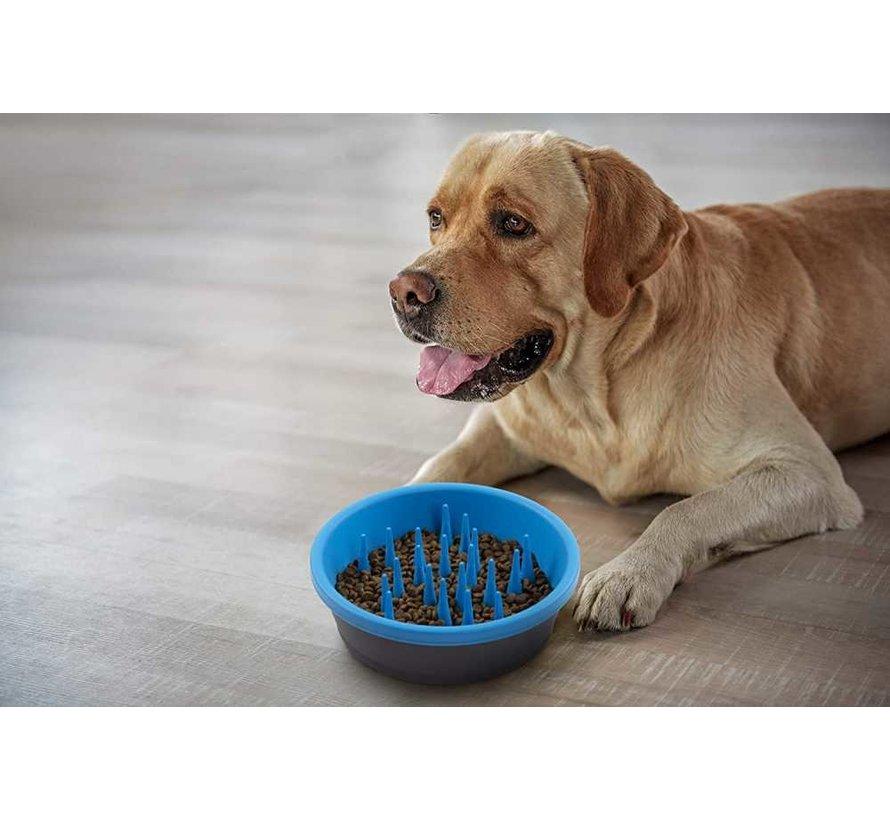 Food Bowl Slow Feeder Blue