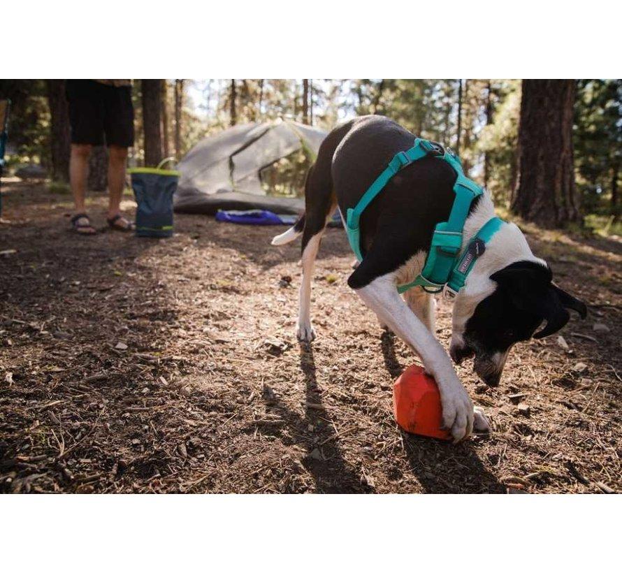 Dog Collar Front Range Aurora Teal