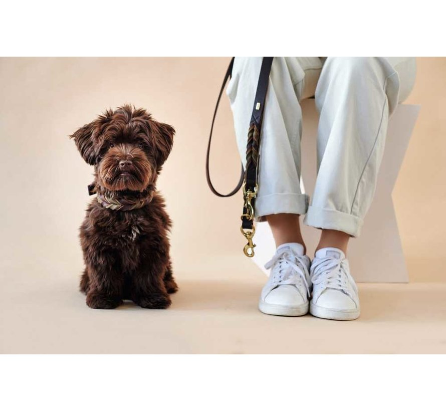 Hondenhalsband Solid Education Duo Bruin