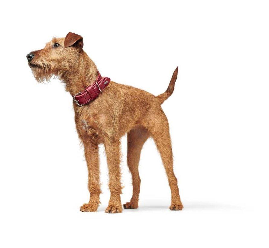 Hondenhalsband Aalborg Rustica Rood