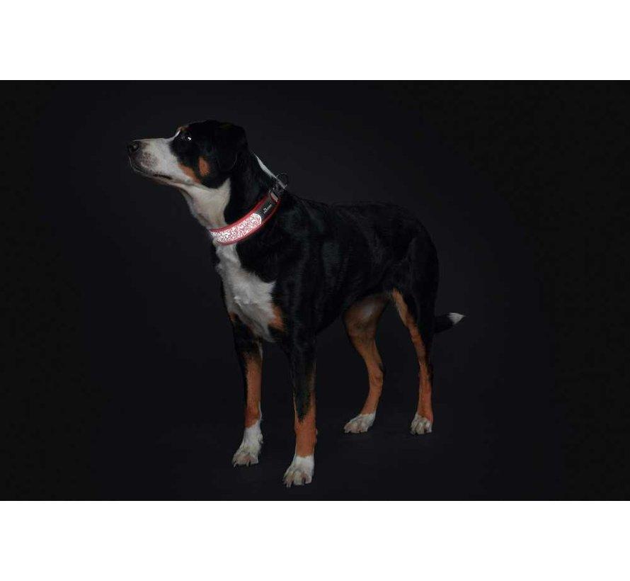 Hondenhalsband Divo Reflect Rood