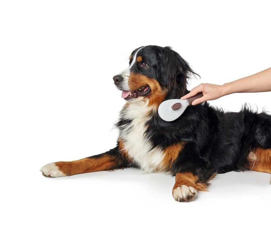 Hondenborstel Spa Zelfreinigend