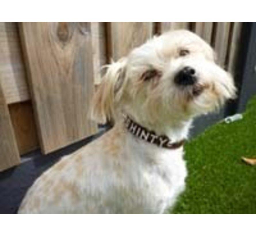 Hondenhalsband met naam Medium Brown