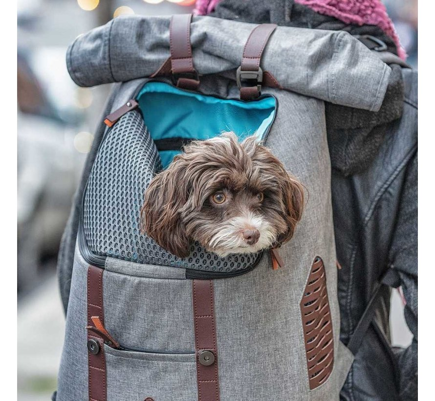 Hondenrugzak K9 Rucksack
