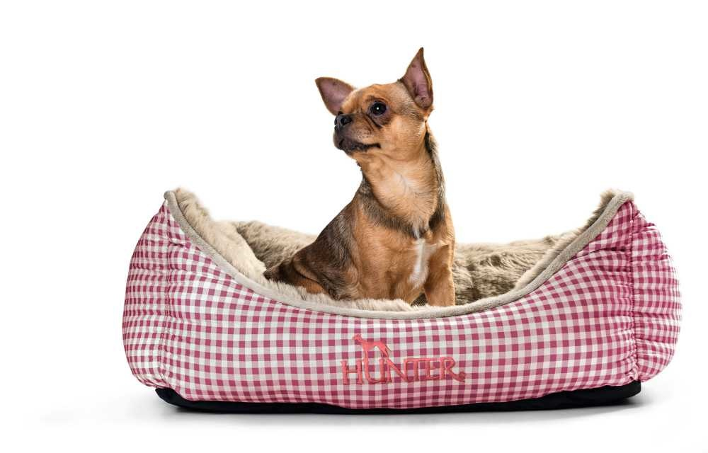 Hondenmand Astana Rood