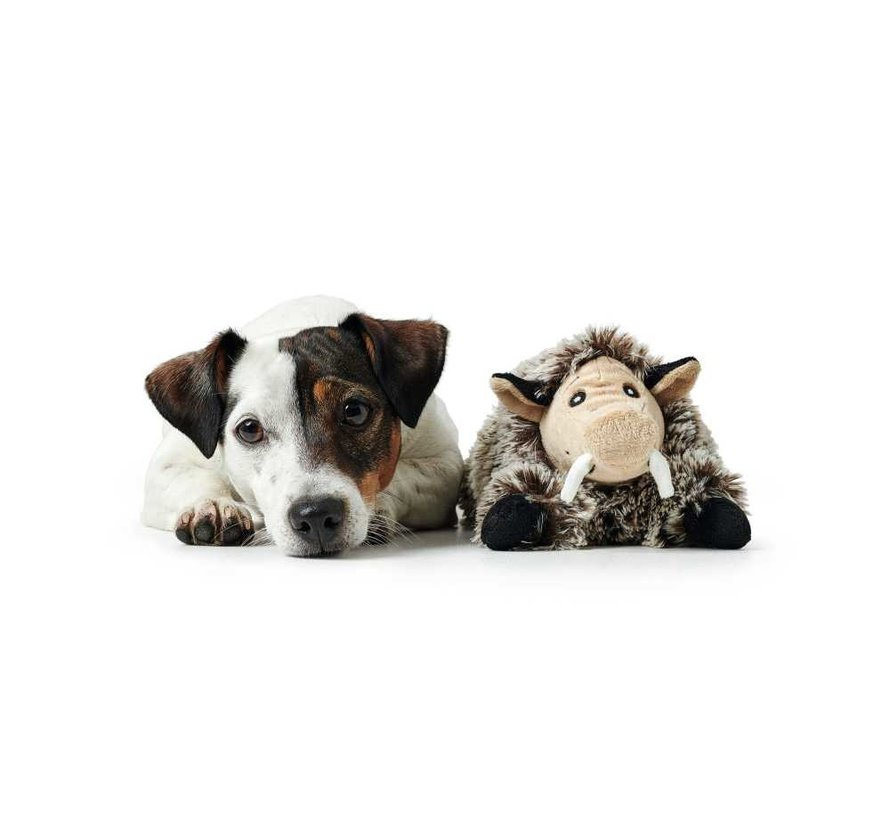 Dog Toy Faro