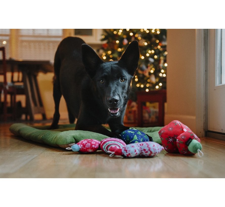 Hondenspeelgoed Kerstbal Starlight
