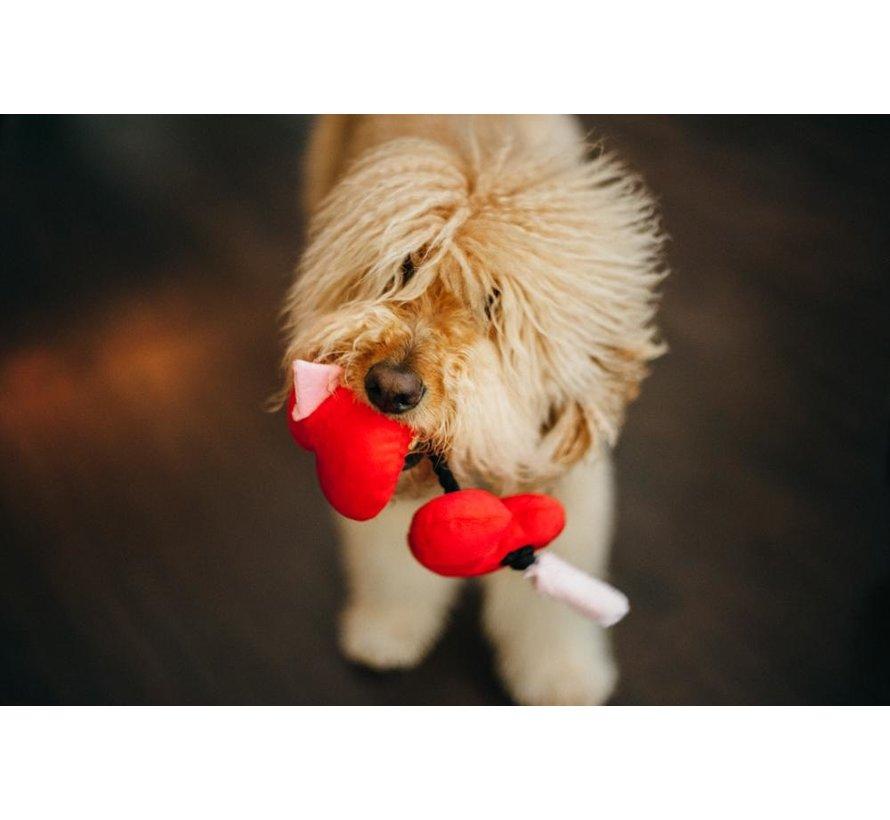 Dog Toy Puppy Love Hearts