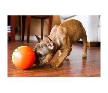 Outward Hound Dog Puzzle Treat Chaser