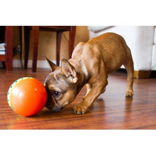 Hondenpuzzel Treat Chaser