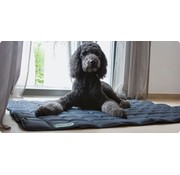 Doctor Bark Dog Blanket Grey