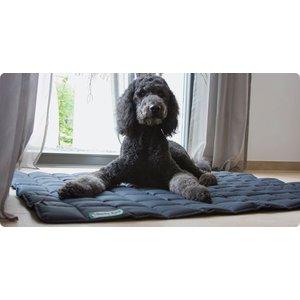 Doctor Bark Dog Blanket Grey