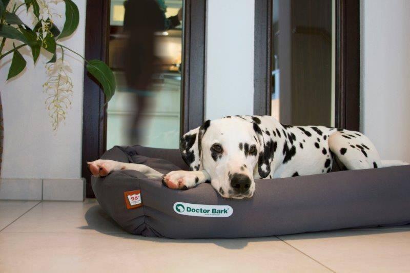 Orthopedische Hondenmand Grijs