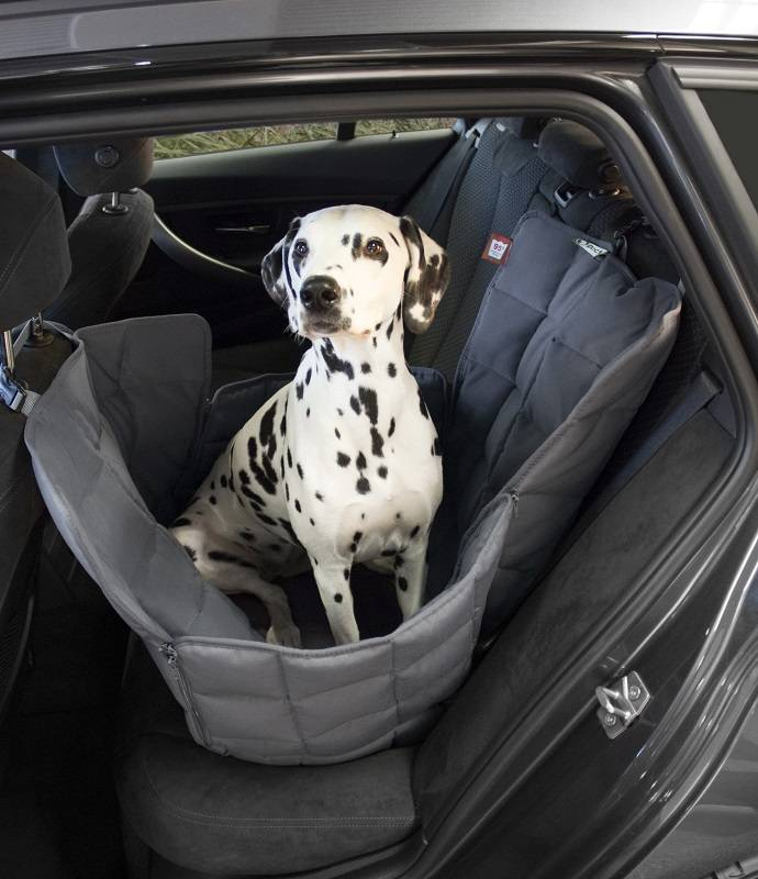 Doctor Bark 1-Car-seat Blanket - M