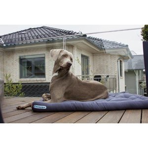 Doctor Bark Dog Cushion Grey