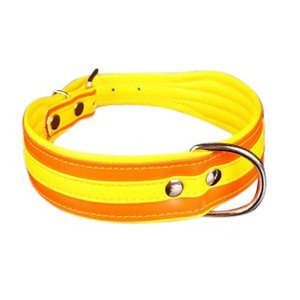 Petsonline Dog Collar Colors Orange