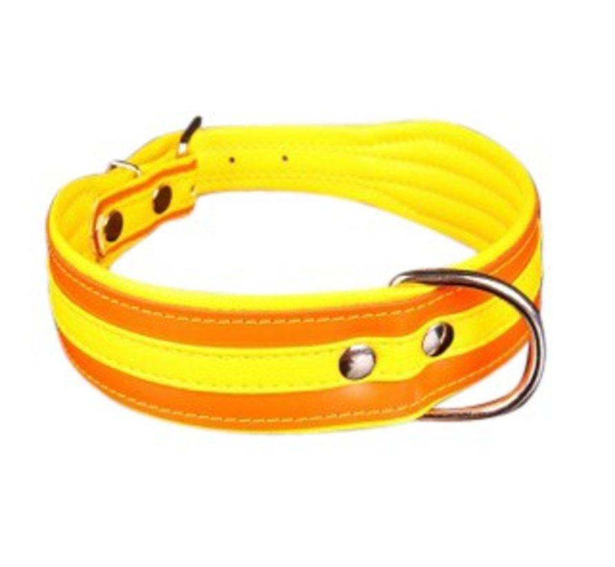 Hondenhalsband Colors Oranje