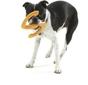 West Paw Design Dog Toy Zogoflex Bumi Orange