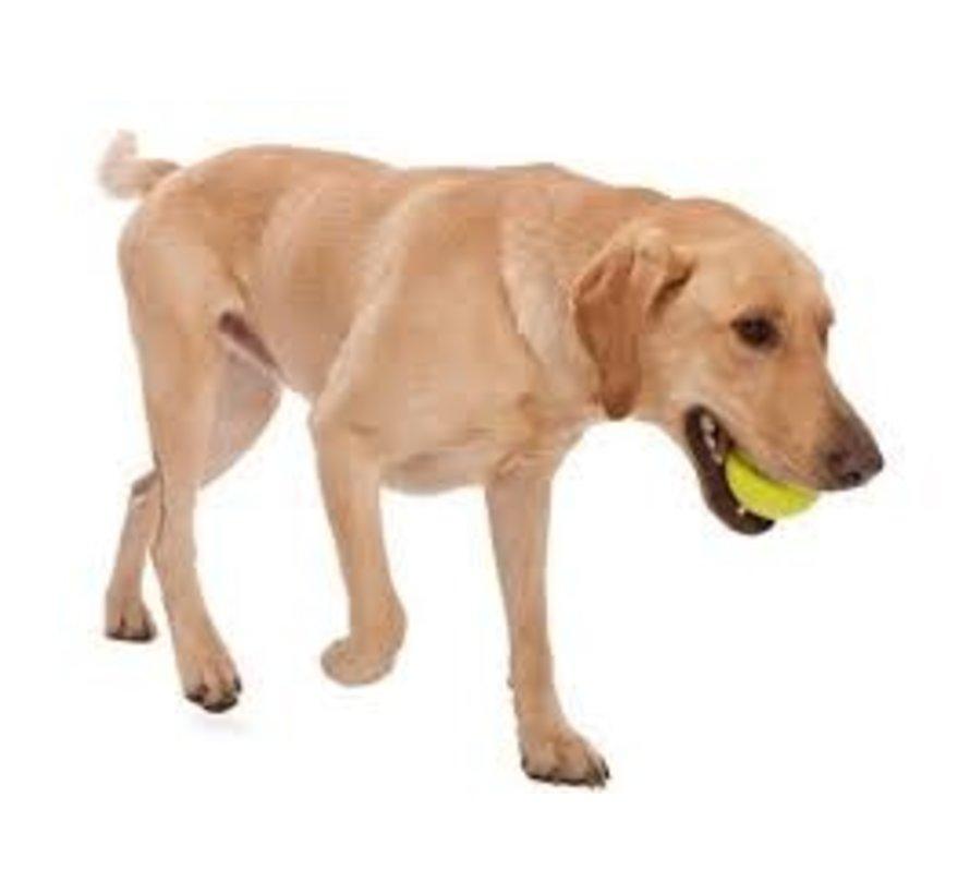 Hondenspeelgoed Zogoflex Jive Lime