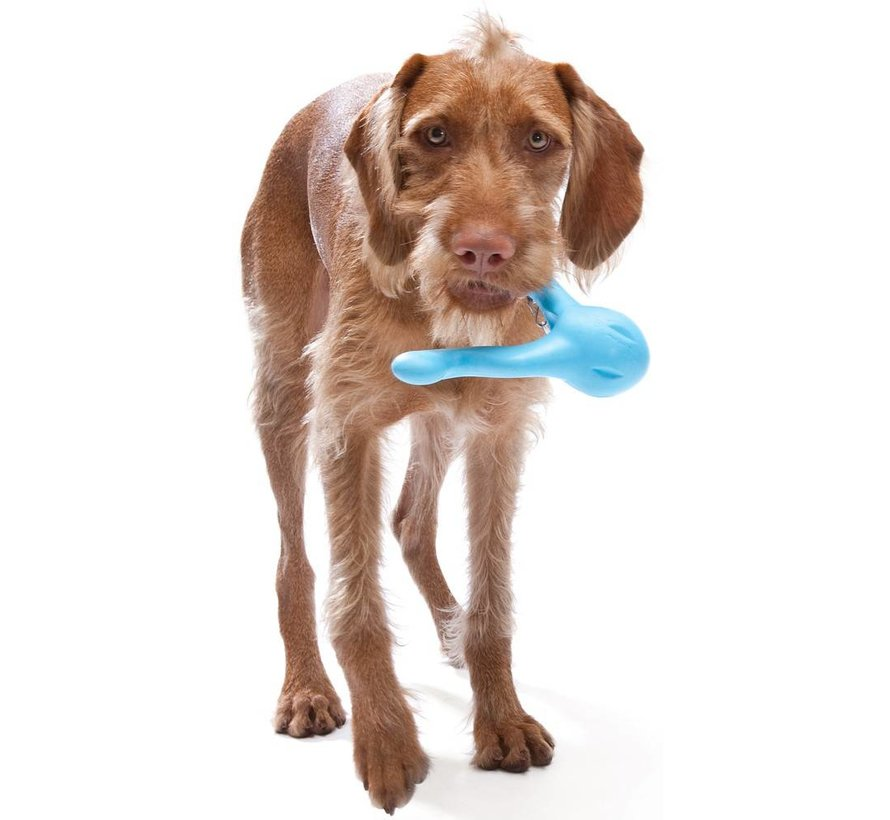 Hondenspeelgoed Zogoflex Tizzi Aqua