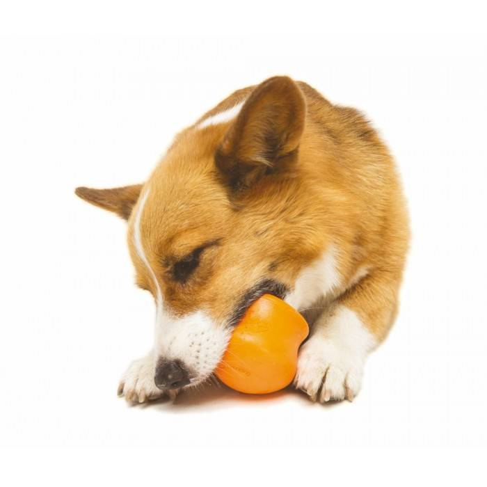 Zogoflex Toppl Treat Toy - Small - Orange
