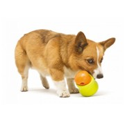West Paw Design Dog Toy Zogoflex Toppl Lime
