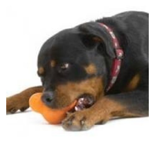 West Paw Design Dog Toy Zogoflex Tux orange