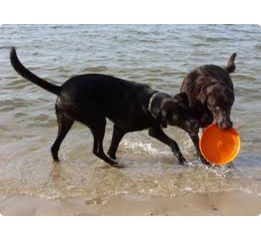 Hondenspeelgoed Zogoflex Zisc Oranje