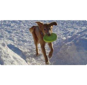 West Paw Design Dog Toy Zogoflex Zisc Lime