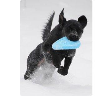 West Paw Design Dog Toy Zisc Aqua