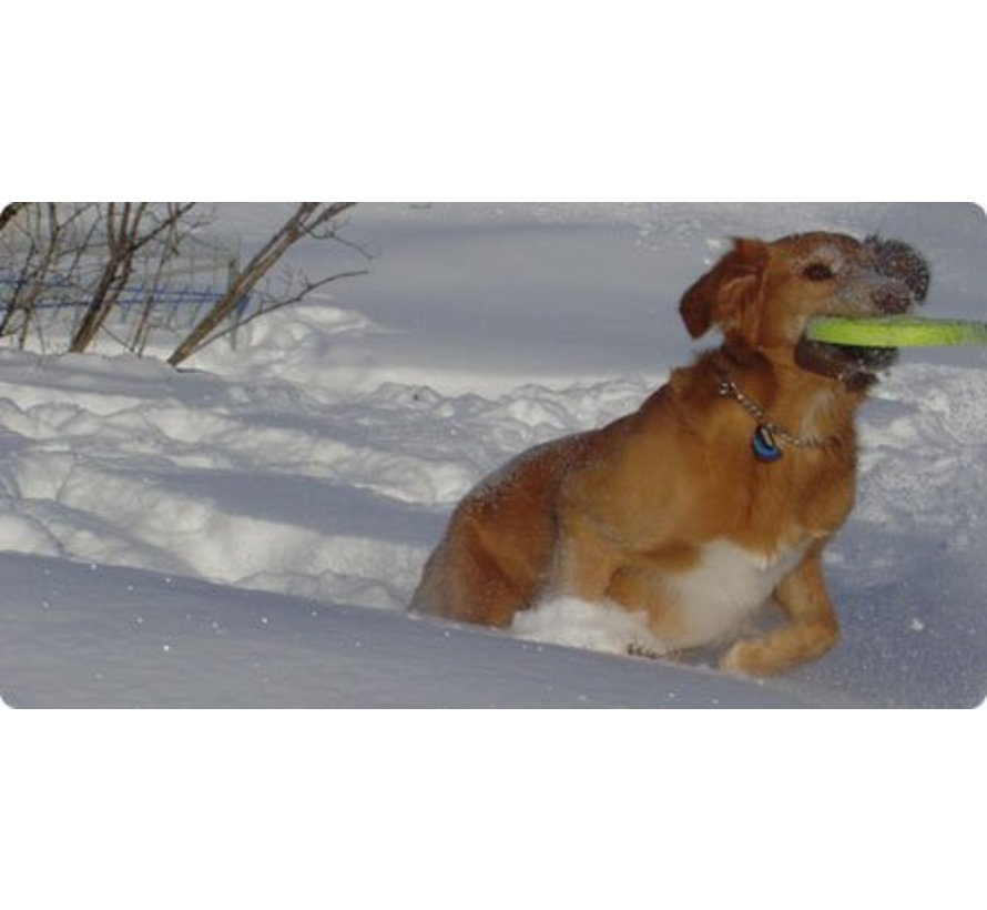 Hondenspeelgoed Zogoflex Zisc Lime