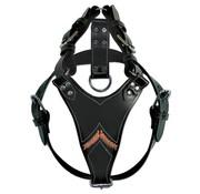 Doxtasy Dog Harness Gladiator Black