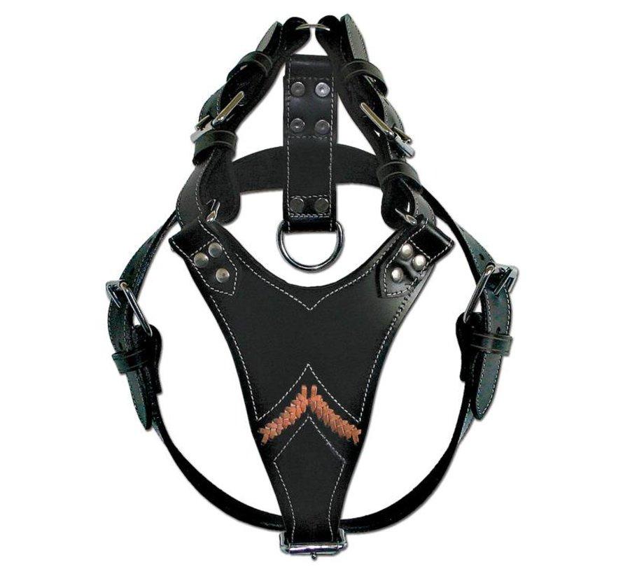 Dog Harness Gladiator Black
