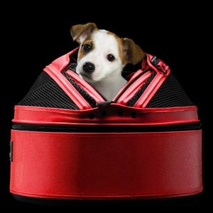 Sleepypod Hondentas Medium Rood