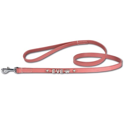 Doxtasy Dog leash with name medium Pink