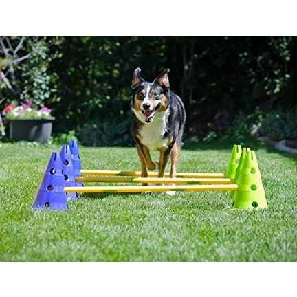 Agility and training