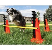 FitPAWS Hurdle Set